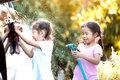 Two asian child girls having fun to help parent washing car Royalty Free Stock Photo