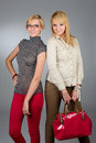 Two attractive blonde girls studio portrait Royalty Free Stock Images