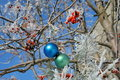 Two balls on a snow-covered rowanberry Stock Photography