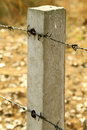 Two barb wires fitted to cement pillar Royalty Free Stock Photography