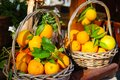 Two baskets of oranges Royalty Free Stock Photo