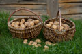 Two baskets of potatoes Royalty Free Stock Photo