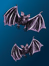 Two bats color sketched flying on a blue night background Royalty Free Stock Images