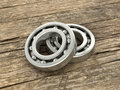 Two bearing on the background of wood dosok. Royalty Free Stock Photo