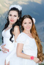 Two beautiful brides Stock Photography