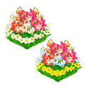 Two beautiful flower beds. Vector isolated