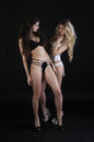 Two beautiful women in erotic lingerie on black Royalty Free Stock Photo