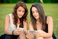 Two beautiful young women looking at smart phones in a park Stock Photography