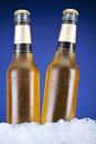 Two beers beer bottles sitting on ice over a blue background Royalty Free Stock Images