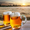 Two beers at sunrise Royalty Free Stock Photo