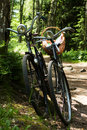 Two bikes in forest Stock Images