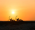 Two bikes silhouettes at the tropical sunset lying on a beach with bird in clear sky Stock Photo