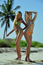 Two bikini models posing sexy in front of palm tree at tropical beach location Royalty Free Stock Photo