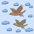 Two birds fly in the sky Stock Photography