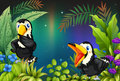 Two birds at the rainforest illustration of Royalty Free Stock Image