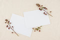 Two blank white cards decorated with budding flowers Royalty Free Stock Photo