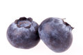 Two Blueberries Isolated Royalty Free Stock Photography