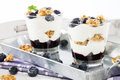 Two blueberry yoghurt desserts from side on a metal tray Royalty Free Stock Photo