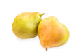 Two blushful ripe pears with spotty pear skin on white. Royalty Free Stock Photo
