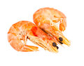 Two boiled shrimp Royalty Free Stock Photography