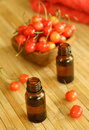Two bottles of essence oil and fresh cherry Royalty Free Stock Photo