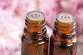 Two bottles of essential oil with pink blossoms in the background Royalty Free Stock Photo