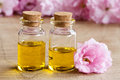 Two bottles of essential oil with pink cherry blossoms Royalty Free Stock Photo