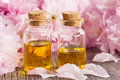 Two bottles of essential oil with pink blossoms Royalty Free Stock Photo