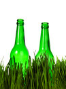Two bottles in the grass green isolated on white background Royalty Free Stock Photography