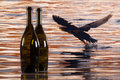 Two bottles from red wine and cormorant flying over the river Royalty Free Stock Photo