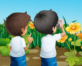 Two boys taking photos of the flowers illustration Royalty Free Stock Photos