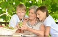 Two boys with their grandmother at nature Stock Photography