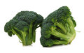 Two broccoli Royalty Free Stock Photo