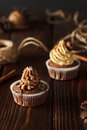 Two brown chocolate cupcakes on wood background with cinnamon and cones Royalty Free Stock Photo