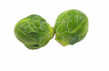 Two brussel sprouts on a white background Stock Images