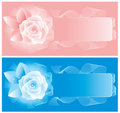Two cards with delicate roses. Vector. Royalty Free Stock Photography