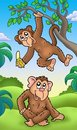 Two cartoon monkeys Stock Photo