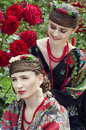 Two caucasian slavonic women sitting in the field of flowers red roses Stock Photos