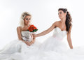 Two charming brides posing with bouquet in studio isolated on white Royalty Free Stock Photos