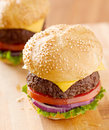 Two cheeseburgers in natural light. Royalty Free Stock Photos