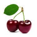 Two cherries with a green leaf isolated closeup Royalty Free Stock Images