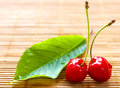 Two cherries placed near green lea Royalty Free Stock Photography