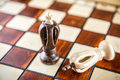 Two chess kings Royalty Free Stock Photo