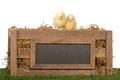Two Chicks on Crate Royalty Free Stock Photo