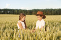 Two children boy and girl examine ears of corn on a wheat field Royalty Free Stock Photo
