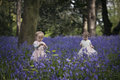 Two children playing in a wood full of bluebells Royalty Free Stock Photo