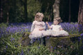 Two children sitting in a wood filled with spring bluebells Royalty Free Stock Photo
