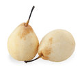 Two chinese pear isolated on white background Stock Images