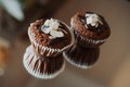 Two chocolate cupcakes with almonds Stock Photos