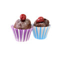 Two chocolate cupcakes isolated on a white background Stock Photography